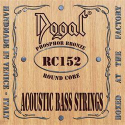 Roundcore Acoustic Bass